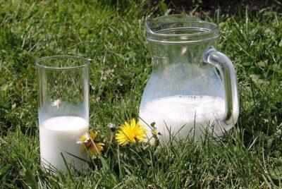 植物性のホイップクリームや牛乳でも作れる?