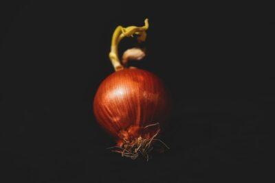 玉ねぎのおすすめ保存方法